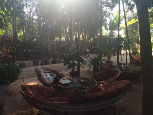 peace cafe 2