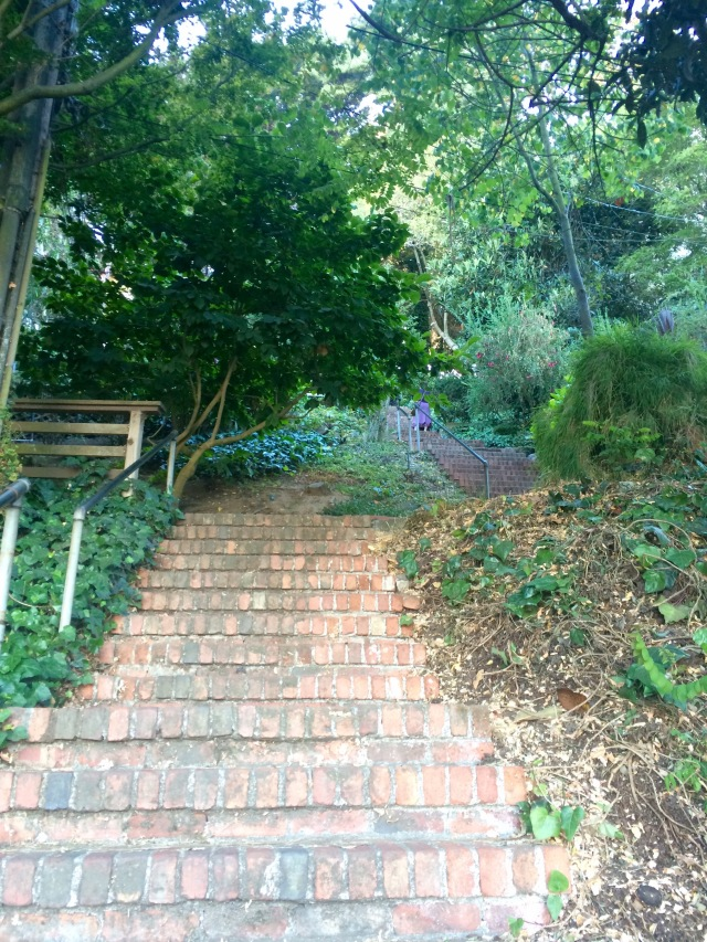Telegraph Hill Stairs 2.jpg
