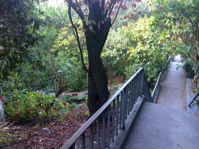 Telegraph Hill Stairs.jpg